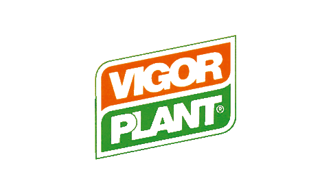 Vigorplant