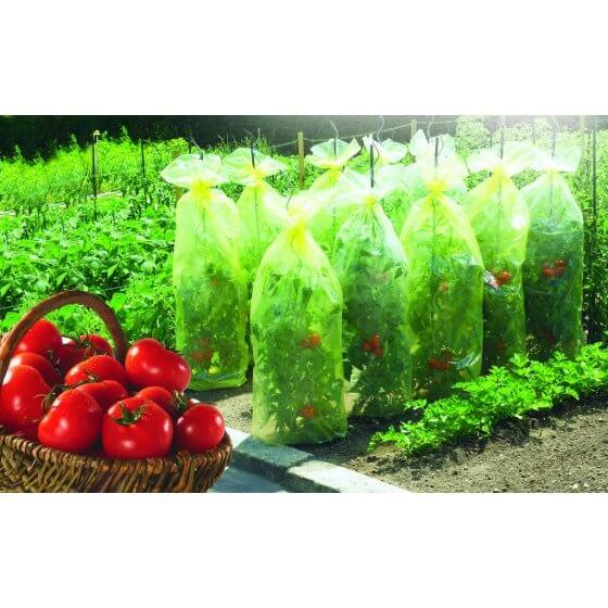 PLAŠT - TULJAC za uzgoj rajčice (TOMATOTUBE)