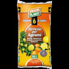 Supstrat za uzgoj agruma